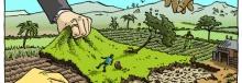 Promoting Land Grabs, Increasing Inequality