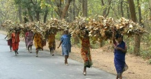 India Land rights