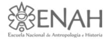 ENAH logo