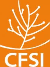 Comité Français pour la Solidarité Internationale