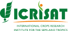 International Crops Research Institute for the Semi-Arid Tropics logo