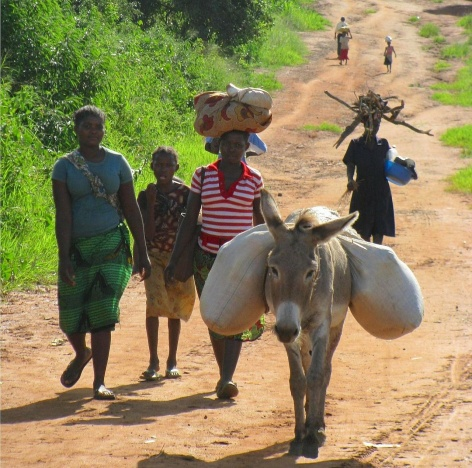 mozambique-80752_1280