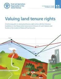 valuing land tenure